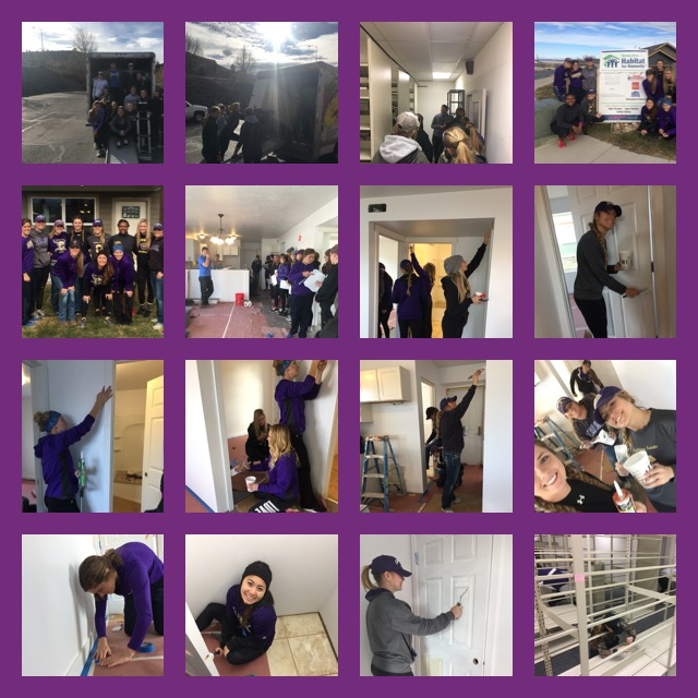 Image collage of students volunteering