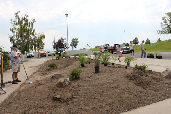 Plant placement in the new native garden space