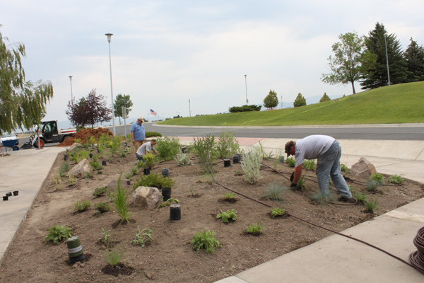 Gardeners work together to plant the native plant garden