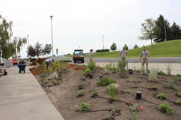 Gardeners planting and perfecting the native plant garden