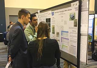 Students discuss research posters at the Undergraduate Research Conference