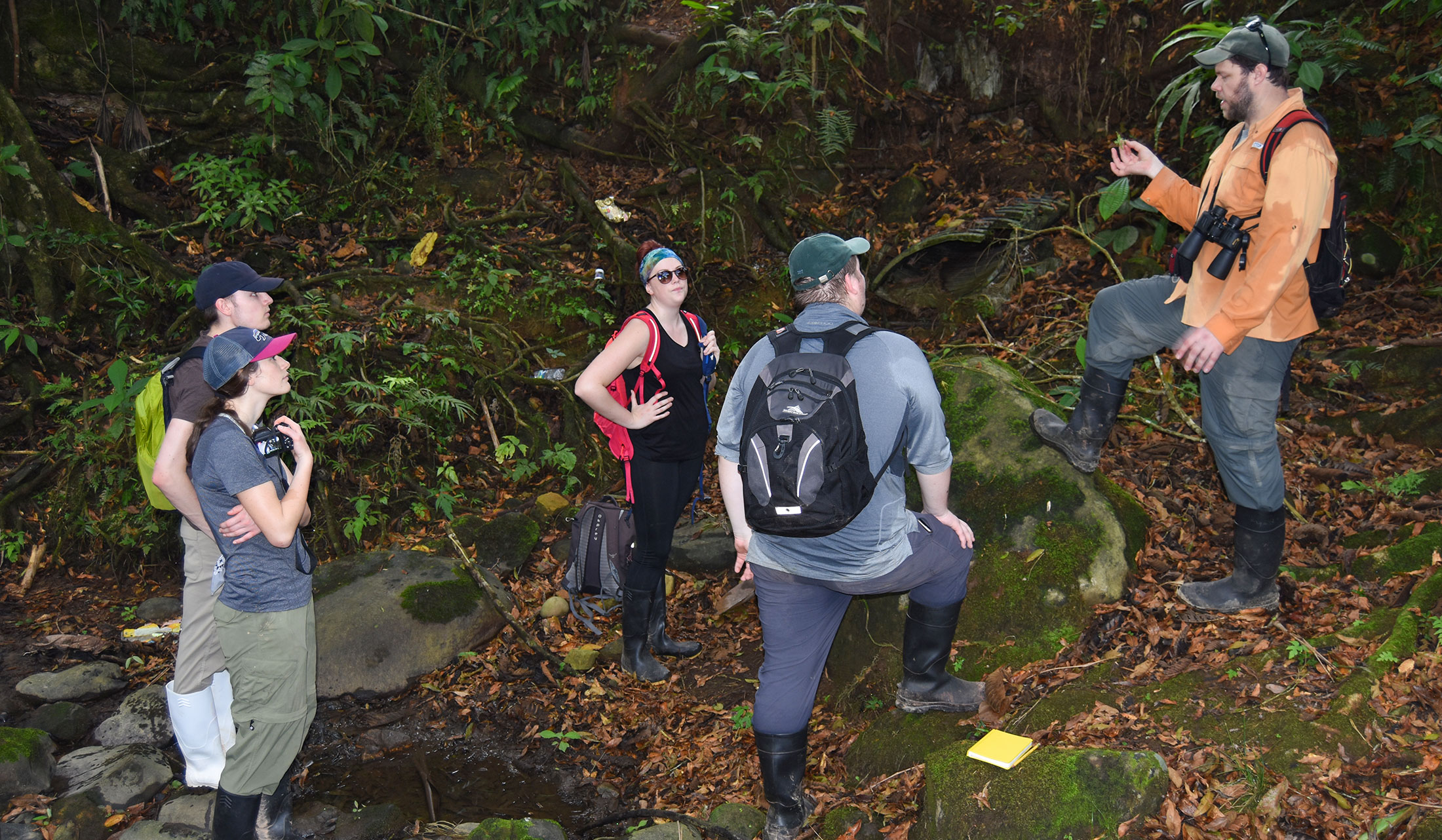 Photo of Biology Assistant Professor Dr. Travis Almquist discussing botony with Carroll students on a trip to Ecuador.