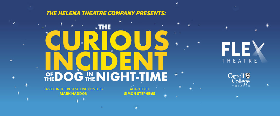 The Curious Incident of the Dog in the Night-Time graphic