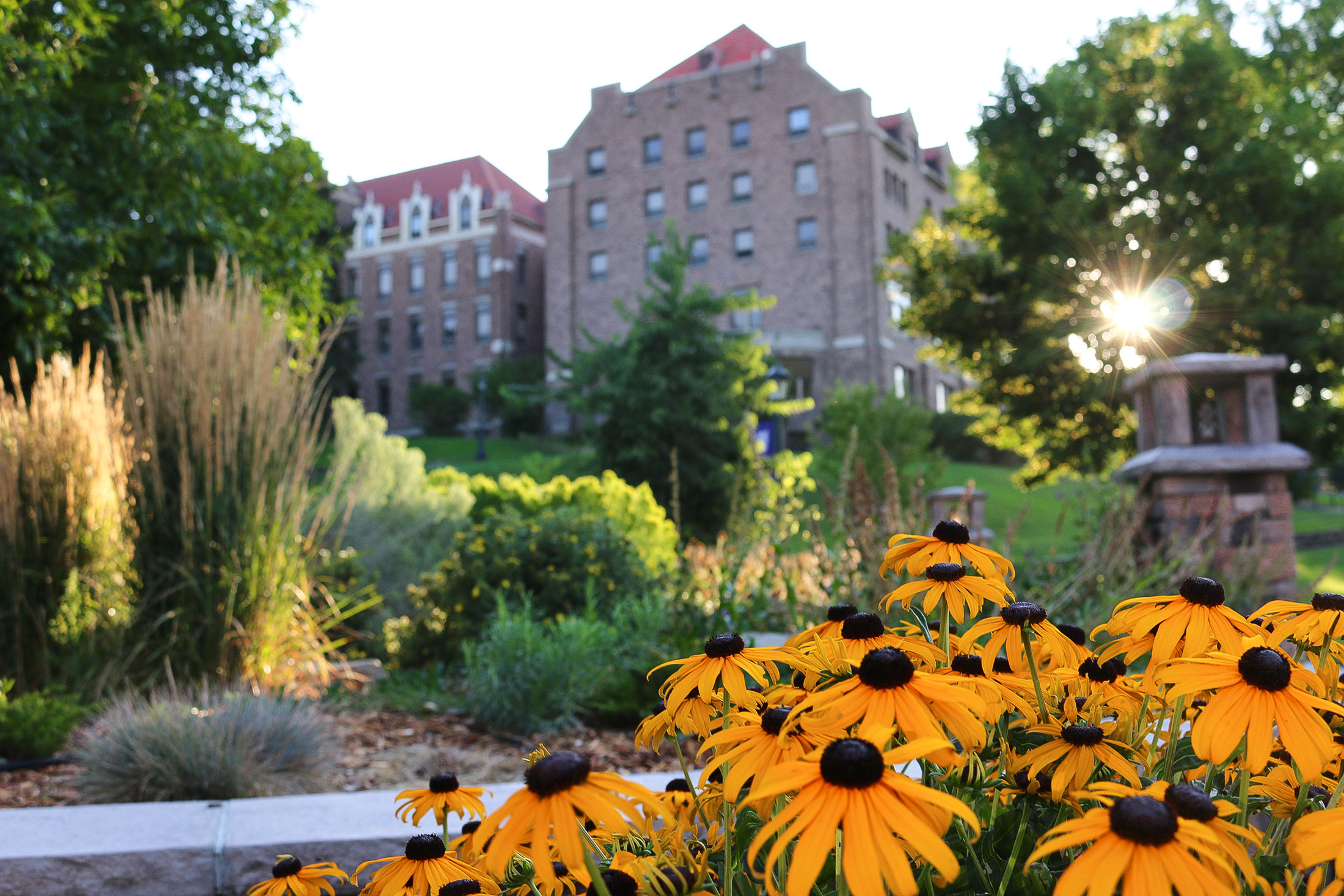 Mission Statement - View of St. Charles Hall on the Carroll Campus with yellow flowers in the foreground
