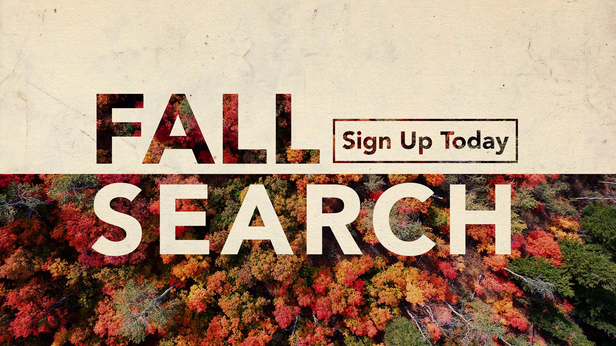 Fall Search graphic