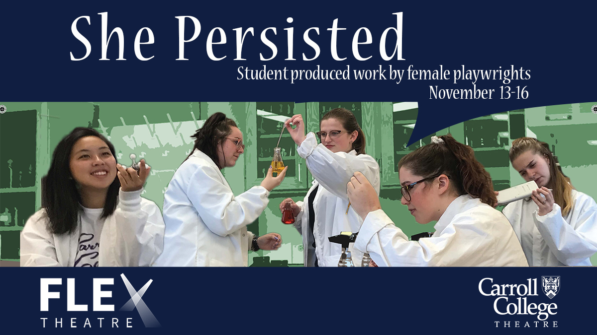 Image for She Persisted
