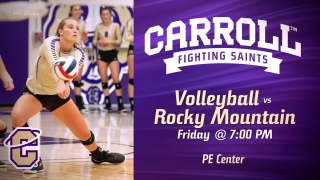Saints Volleyball Graphic