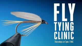 Fly Tying Thursdays Graphic