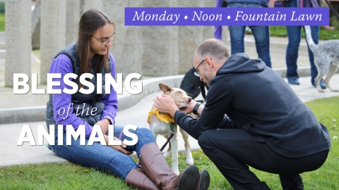 Blessing of the Animals graphic