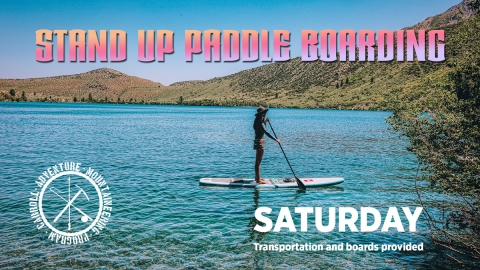 Stand Up Paddle Boarding graphic